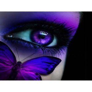 Diamond Painting Vlinder met oog