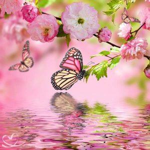 Diamond Painting Vlinder met Water