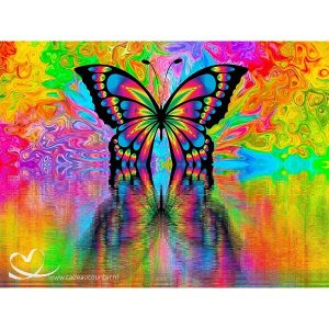 Diamond Painting Felgekleurde Vlinder