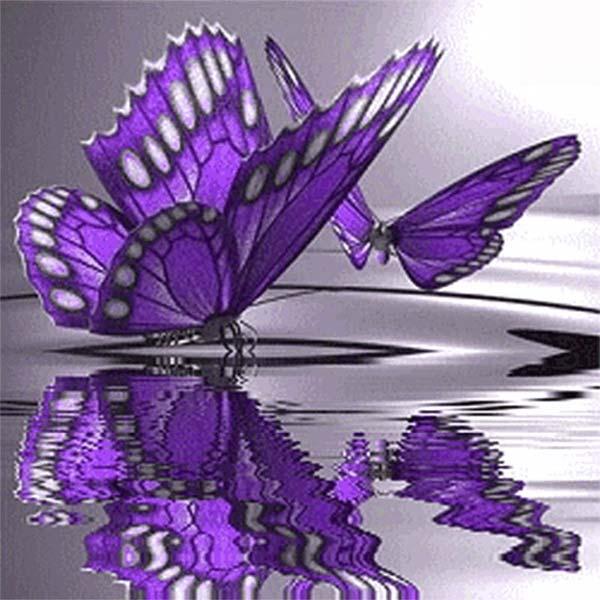 Diamond Painting Paarse Vlinder